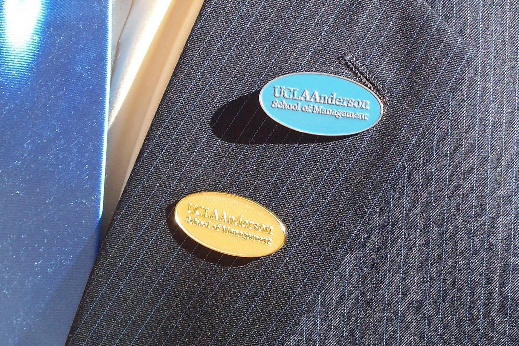 Blue and Gold Lapel Pins