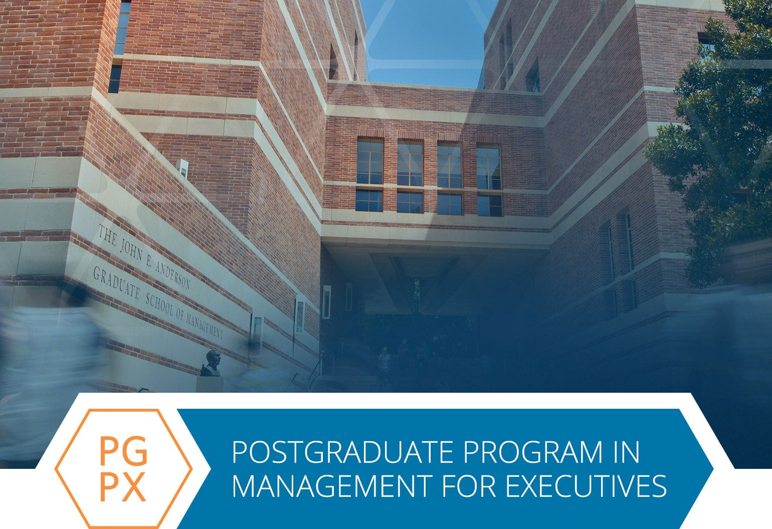Best Executive Education Programs 2020 PGPX
